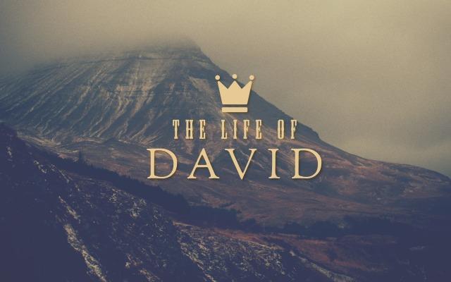 david_mcc_14.4x9_web